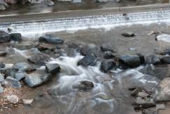 Sligo Creek, Takoma Park, MD
