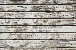 Paint failure, Bank Barn, Bostwick House, Bladensburg, MD